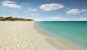 在阿鲁巴海岛上的老鹰海滩 免版税图库摄影