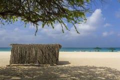在阿鲁巴的老鹰海滩 免版税库存图片