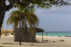 在阿鲁巴的老鹰海滩 库存照片