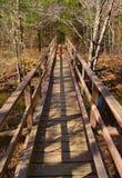在阿巴拉契亚足迹的人行桥 库存图片