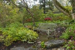 在降雨量以后的老木庭院长凳 免版税图库摄影