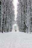 在降雪以后的积雪的公园 免版税库存照片