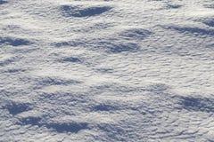 在降雪以后的雪 库存图片