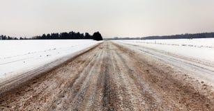 在降雪以后的雪 免版税库存照片