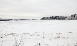 在降雪以后的领域 免版税库存照片
