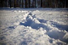 在降雪以后 免版税库存图片