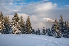 在降雪前的晚上在冬天山 免版税库存照片