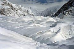 在降雪以后的南Inylchek冰川在天山的8月 免版税图库摄影