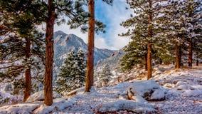 在降雪以后的科罗拉多山 免版税库存照片