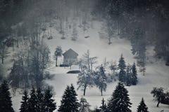 在降雪以后的Gllomy大气 免版税库存照片