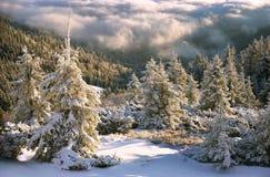 在降雪以后 免版税库存照片