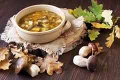 在陶器的蘑菇汤 图库摄影