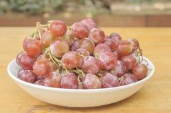 在陶瓷大胆的红葡萄 库存照片
