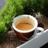 在陶瓷杯子的浓咖啡咖啡 库存照片