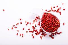 在陶瓷白色杯子的有机桃红色干胡椒在白色 库存图片
