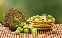 在陶瓷碗的新鲜的绿色莲花种子 库存图片