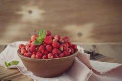 在陶瓷碗的野草莓在减速火箭的样式 库存照片