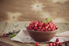 在陶瓷碗的野草莓在减速火箭的样式 免版税图库摄影