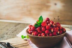 在陶瓷碗的野草莓 免版税库存照片