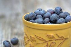 在陶瓷碗outisde的新鲜的整个蓝莓 库存照片