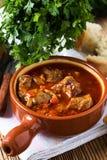 在陶瓷罐的肉炖煮的食物 图库摄影