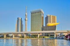 在隅田川的东京,日本地平线 库存照片