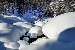 在随风飘飞的雪中的人在西伯利亚木头 免版税库存图片