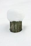 在随风飘飞的雪的残余部分 库存照片