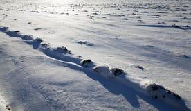 在随风飘飞的雪的雪 库存照片