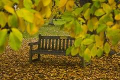 在隐藏的长凳之后的秋天离开公园 库存图片