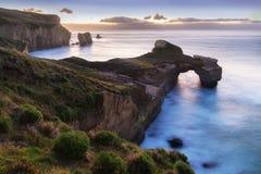 在隧道海滩的峭壁形成,从在第一早晨光,达尼丁,奥塔哥地区,南岛的隧道海滩看见的雕刻的峭壁 NZ 免版税库存图片