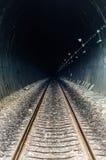 在隧道的铁路通过山 免版税库存图片