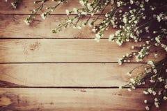 在难看的东西木委员会背景的白花与空间 免版税库存照片