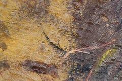在难看的东西肮脏的金属表面摘要纹理backgr的年迈的油漆 免版税库存图片