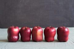 在难看的东西背景的五个红色苹果 免版税库存照片