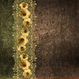 在难看的东西背景的金花卉边界 免版税图库摄影
