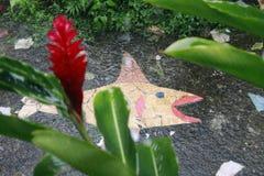 在雨下的岩石鱼 免版税图库摄影