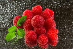 在雨下的新鲜的有机成熟莓 图库摄影