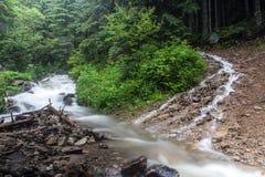 在雨以后的快速和迅速山小河潮流 库存照片