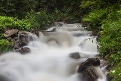 在雨以后的快速和迅速山小河潮流 免版税库存照片