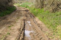 在雨以后的泥泞的路 库存照片