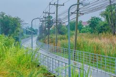 在雨以后的湿路在电杆和树中 图库摄影
