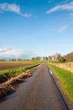 在雨以后的缩小的乡下公路 免版税库存照片