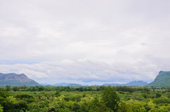 在雨前的看法森林;kanchanaburi 图库摄影