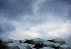 在雨和雷暴下的伞 免版税图库摄影