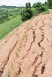 在雨季期间的山崩 库存图片