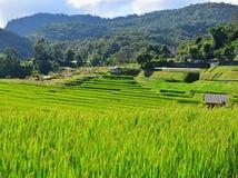 在雨季的自然吸引力在北泰国 免版税库存图片