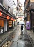 在雨时间的有伞的街道和人走在街道红色的 库存图片