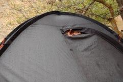 在雨期间,少妇看在帐篷外面 免版税库存图片