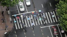 在雨期间,有伞的人们穿过路 免版税图库摄影